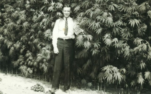 historic hemp photo